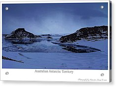 The Cold March Acrylic Print by David Barringhaus