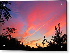 Acrylic Print featuring the photograph The Color Gets Good by Kathryn Meyer