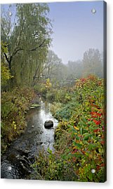 The Color Of Autumn Acrylic Print