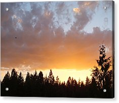 The Color Of Evening Acrylic Print