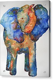 The Colorful Elephant Acrylic Print by Brandi  Hickman