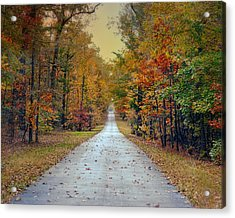 The Colors Of Fall - Autumn Landscape Acrylic Print
