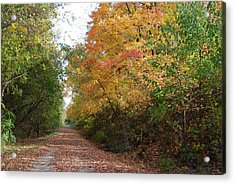 Acrylic Print featuring the photograph The Colors Of Fall by Ramona Whiteaker