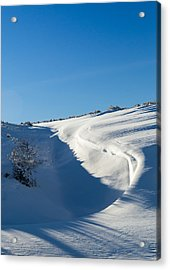 The Colors Of Snow Acrylic Print