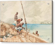 The Conch Divers Acrylic Print by Winslow Homer