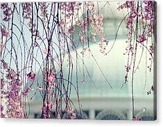 The Conservatory 2 Acrylic Print by Jessica Jenney