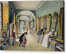 The Corridor And The Last Cabinet Of The Egyptian Collection In The Ambraser Collection Acrylic Print by Carl Goebel