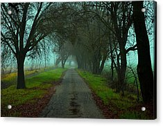 The Country Road Acrylic Print