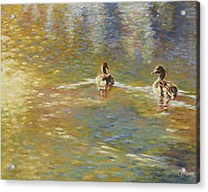 The Courtship Acrylic Print by Gini Heywood
