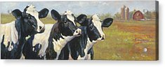 The Cow Girls Acrylic Print by Tracie Thompson