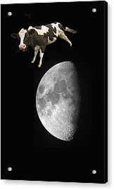 The Cow Jumped Over The Moon Acrylic Print by John Short