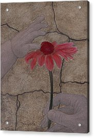 The Creation Of Eve Acrylic Print by Barbara St Jean
