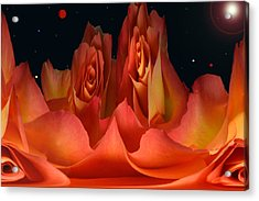 The Creation Of Rose. Acrylic Print by Terence Davis