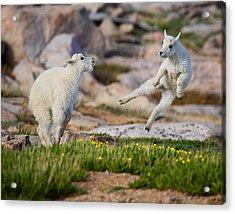 The Dance Of Joy Acrylic Print