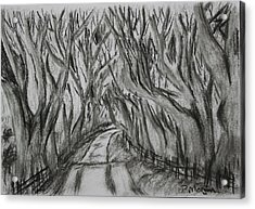 The Dark Hedges Acrylic Print by Paul Morgan