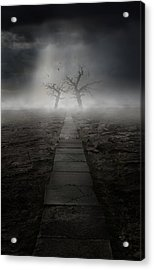 The Dark Land Acrylic Print by Jaroslaw Blaminsky