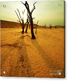 The Dead Valley Acrylic Print by Boon Mee