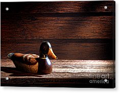 The Decoy Acrylic Print by Olivier Le Queinec