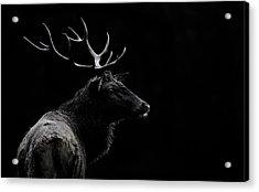The Deer Soul Acrylic Print