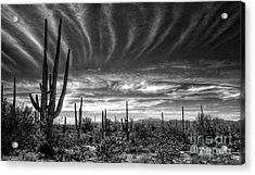 The Desert In Black And White Acrylic Print by Saija  Lehtonen