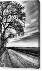 The Dirt Road In Black And White Acrylic Print by JC Findley