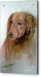 The Doggie Acrylic Print