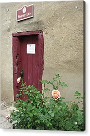 Acrylic Print featuring the photograph The Doorway by Pema Hou