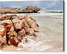 The Dragon Of Labadee Acrylic Print