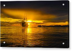 Acrylic Print featuring the photograph The Dream by Terry Cosgrave