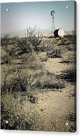 The Dry Lands Of Arizona Acrylic Print