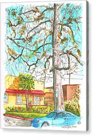 The Dry Tree In The Yellow House - Hollywood - California Acrylic Print by Carlos G Groppa