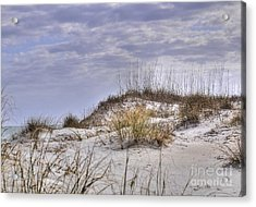 Acrylic Print featuring the photograph The Dunes At Huntington Beach State Park by Kathy Baccari