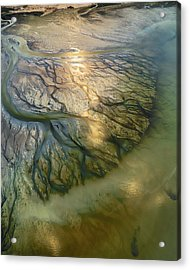 The Earth Veins Acrylic Print