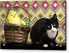 The Easter Tiggy Acrylic Print