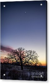 The Edge Of Space Acrylic Print