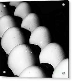 The Egg Brigade Acrylic Print