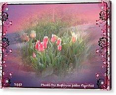 The Elagance Of Spring Acrylic Print
