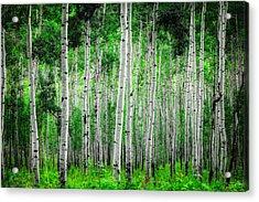 My Own Emerald Forest Acrylic Print