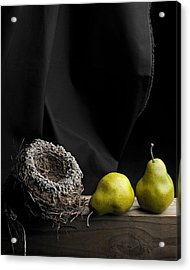 The Empty Nest Acrylic Print
