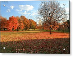 Acrylic Print featuring the photograph The End Of Autumn In Francis Park by Scott Rackers