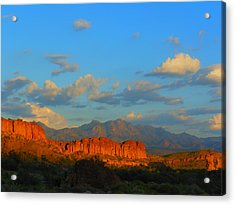 The Endangered West Acrylic Print