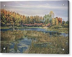 The Endangered Wetlands No. 4 Acrylic Print by James Welch