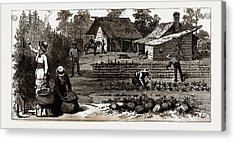The English Garden, Scenes In Rugby, The English Colony Acrylic Print by Litz Collection