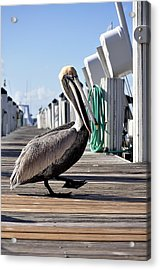 The Entertainer Acrylic Print by Andres LaBrada