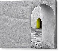 The Escape Acrylic Print by Prakash Ghai