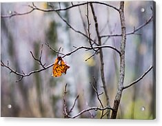 The Essence Of Autumn - Featured 3 Acrylic Print by Alexander Senin