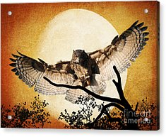 The Eurasian Eagle Owl And The Moon Acrylic Print