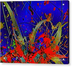 The Explosion Of Color Acrylic Print by Doris Wood