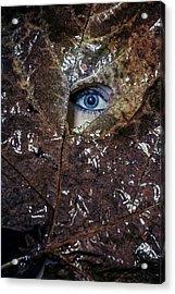 The Eye Acrylic Print by Joana Kruse