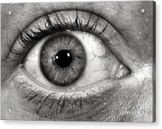 The Eye Acrylic Print by Luke Moore